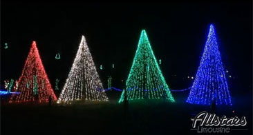 Christmas at Jellystone Park Photos